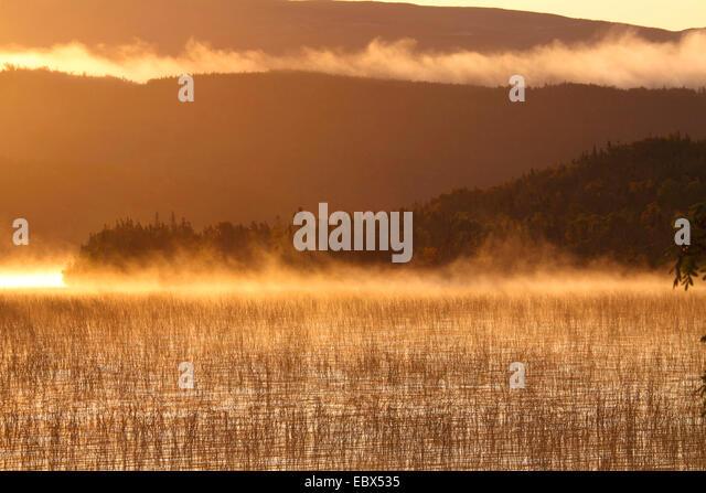 Landschaft im Morgen Nebel Im Gros Morne National Park, Kanada, Neufundland, Gros Morne National Park Stockbild