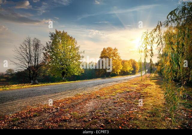 Autobahn durch den schönen Herbstwald und die strahlende Sonne Stockbild