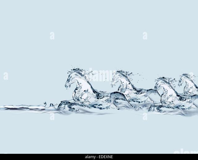 Eine Gruppe von Pferden aus Wasser im Galopp im Wasser gemacht. Stockbild