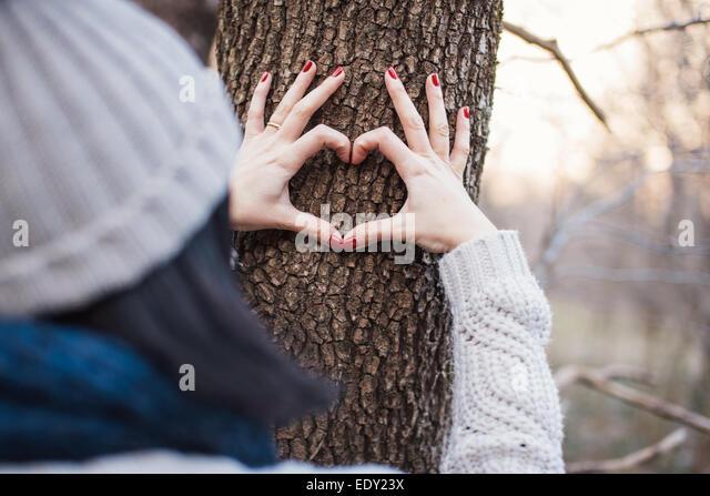 Hände machen eine Herzform an einem Baumstamm Stockbild