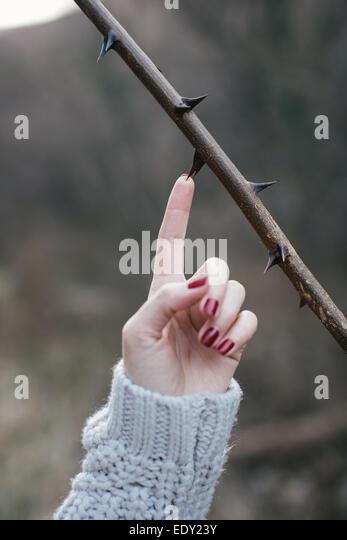 Frauen Hand stechen durch ein Dorn. Gefährliches Konzept Stockbild
