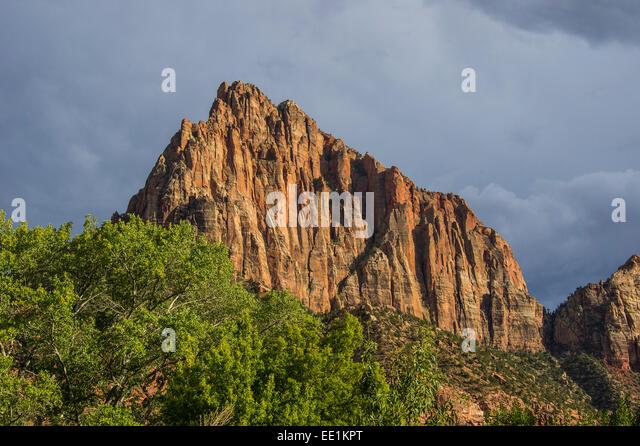 Späten Sonnenlicht Leuchten auf den Felsen von der Zion Nationalpark, Utah, Vereinigte Staaten von Amerika, Stockbild