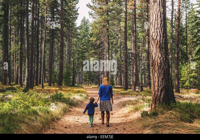 Mutter mit Sohn (2-3) im Wald wandern Stockbild