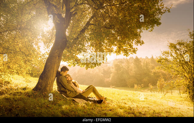 Liebespaar unter einem großen Baum im Park im Herbst Stockbild