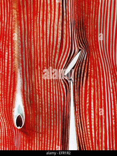 Max Ernst Blind Schwimmer (Wirkung von einem Hauch) Stockbild