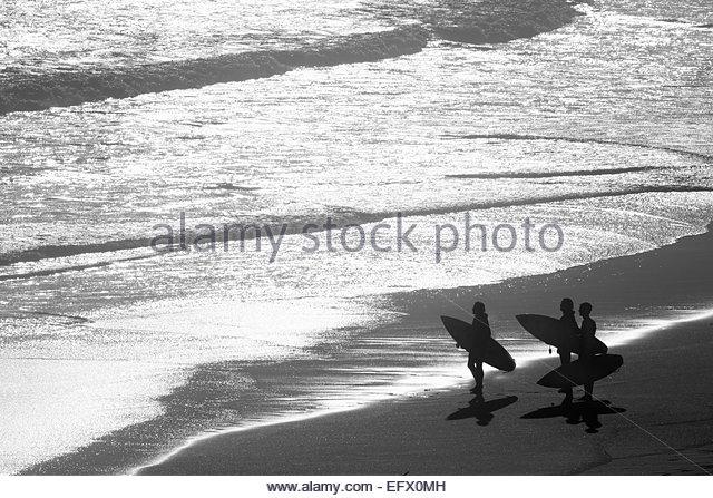 Gruppe von Surfern, die mit Blick auf das Meer Surfbretter Stockbild