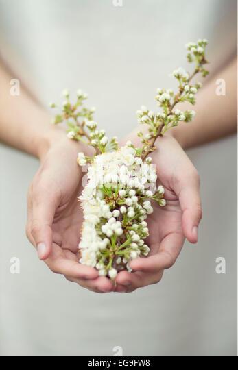 Frau halten Blumen in Händen Stockbild