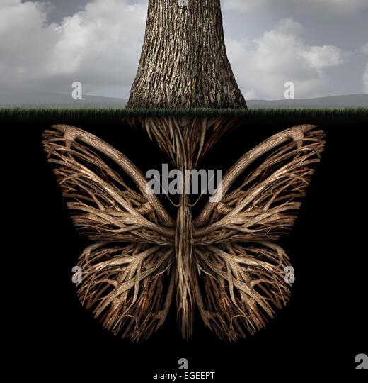 Kreativen Wurzeln Konzept wie ein Baum mit einem Stamm geformt wie ein Schmetterling als eine starke ökologische Stockbild