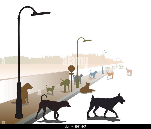 Bearbeitbares Vektor-Illustration einer bunt zusammengewürfelten Gruppe von streunenden Hunden auf einer einsamen Stockbild