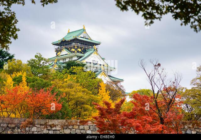 Burg von Osaka in der Herbstsaison. Stockbild