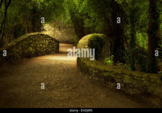 Gang über die Brücke. Bunratty Castle, Irland Stockbild