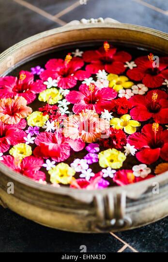 Blumenschmuck in Indien. Stockbild