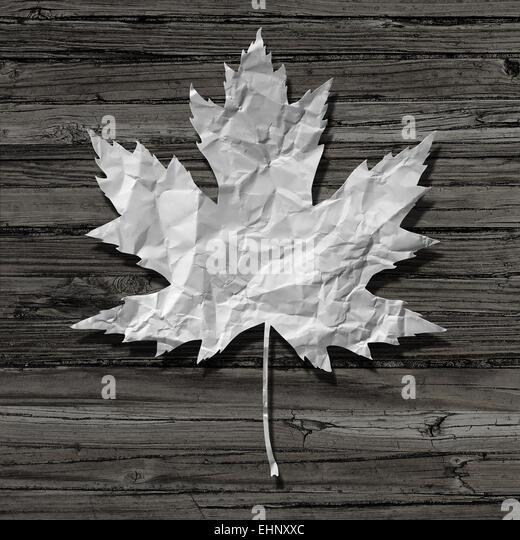 Papier Blatt auf einem alten rustikalen Holz Hintergrund als Symbol für Natur und recycling oder Zellstoff Stockbild