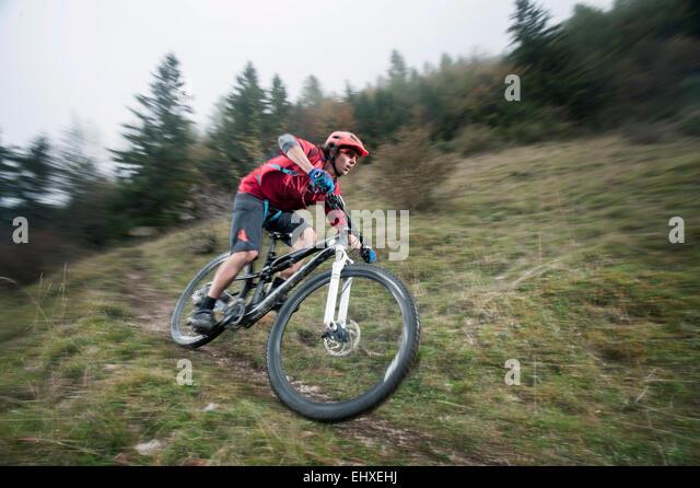 Mountainbiker fahren im Wald, Bayern, Deutschland Stockbild