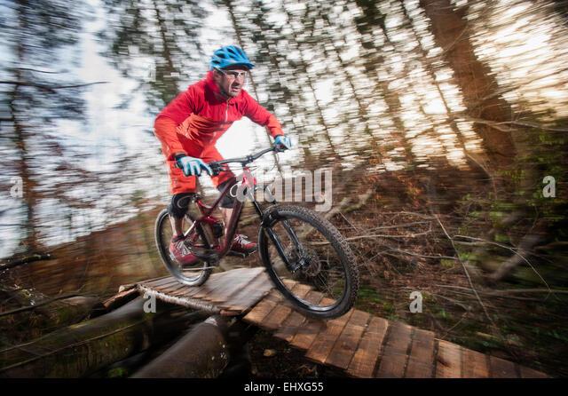 Mountainbiker, die hölzerne Brücke im Wald, Bayern, Deutschland Stockbild