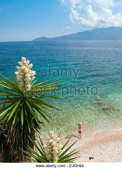 Ansicht von exotischen Pflanzen und Frau Blick auf das Meer am Sonnenstrand Stockbild