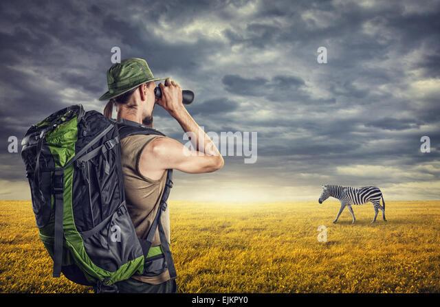 Mann mit Fernglas beobachten Zebra in der Savanne Sonnenuntergang Himmel mit dramatische Wolken Stockbild