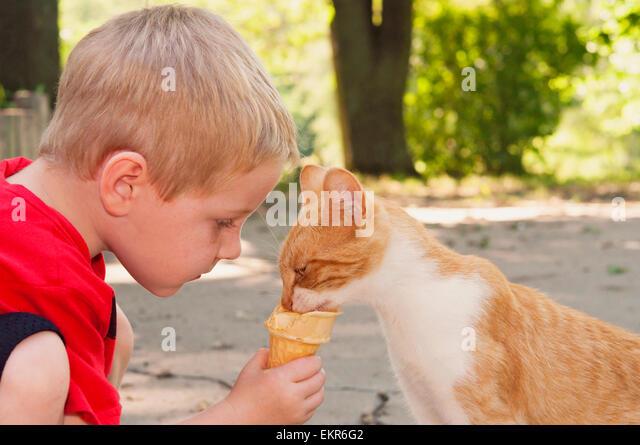 Kind Fütterung Katze seine Eistüte Stockbild