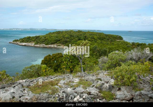 Great Bird Island ist eine kleine Insel fast drei Kilometer vor der Nordost-Küste von Antigua in der Karibik. Stockbild
