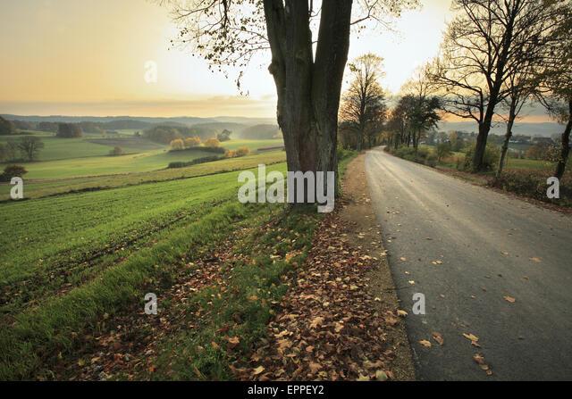 Am Nachmittag Landschaft. Bayern, Deutschland Stockbild