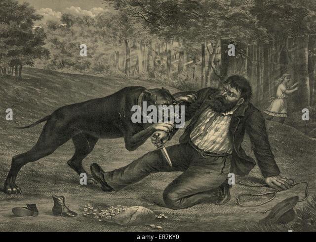 Ein tödlicher Konflikte. Der Kidnapper vereitelt. Datum c1892 12. November. Stockbild
