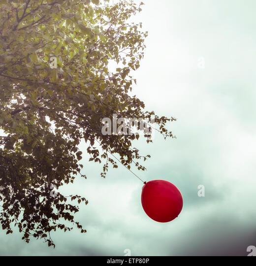 einen roten Ballon an einem Baum hängen Stockbild