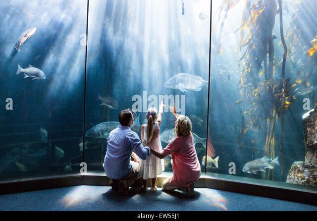 Ansicht der Familie betrachten Aquarium zu tragen Stockbild