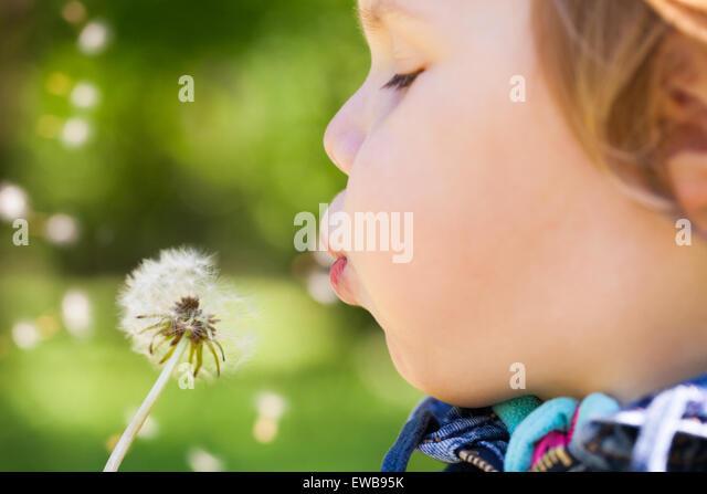 Kaukasische blonde Babymädchen bläst auf einer Blume Löwenzahn in einem Park, selektiven Fokus auf Stockbild