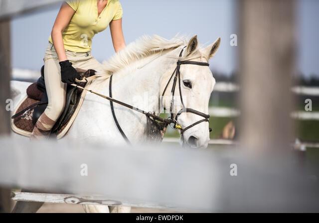 Junge Frau springen mit Pferd Stockbild
