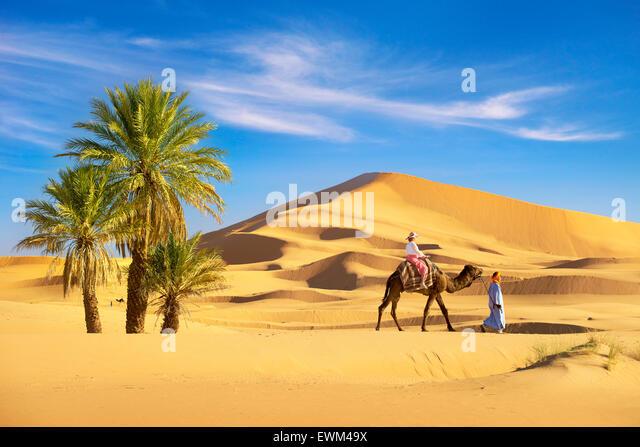 Touristen auf Kamel reiten, Erg Chebbi Wüste bei Merzouga, Sahara, Marokko Stockbild