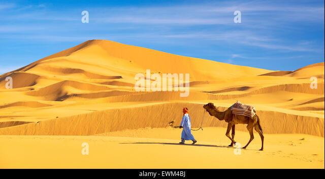 Berber Mann mit seinem Kamel, Erg Chebbi Wüste bei Merzouga, Sahara, Marokko Stockbild