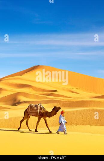 Berber Mann mit seinem Kamel, Erg Chebbi Wüste bei Merzouga, Sahara-Dünen, Marokko Stockbild