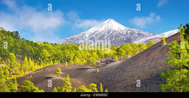 Teneriffa - Blick auf Teide Vulkan Mount, Kanarische Inseln, Spanien Stockbild