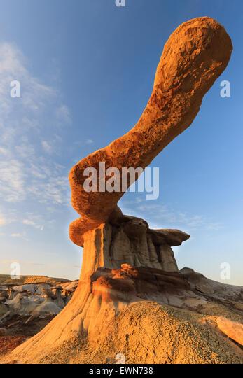 König der Flügel in der Bisti Wilderness, New Mexico, USA Stockbild