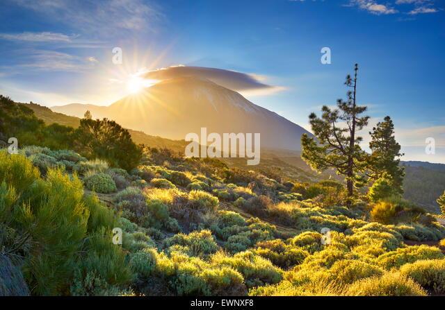 Teide-Nationalpark bei Sonnenuntergang, Teneriffa, Kanarische Inseln, Spanien Stockbild