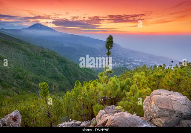 Teide Mount Landschaft bei Sonnenuntergang, Teneriffa, Kanarische Inseln, Spanien Stockbild