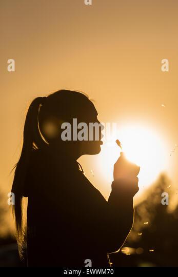 Teenager-Mädchen Hintergrundbeleuchtung von der Sonne bläst einen Löwenzahn Samen Kopf Samen fangen Stockbild