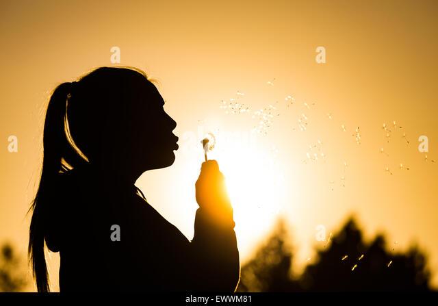 Teenager-Mädchen Hintergrundbeleuchtung von der Sonne bläst einen Löwenzahn Samen Kopf Samen fangen - Stock-Bilder