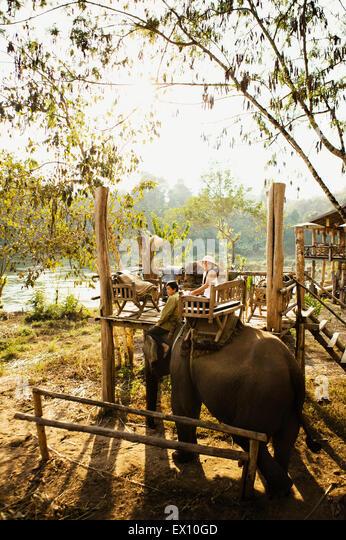 Lao Frau und Mahout Elefantenritt ein auf dem Khan Fluss. Luang Prabang, Laos. Stockbild