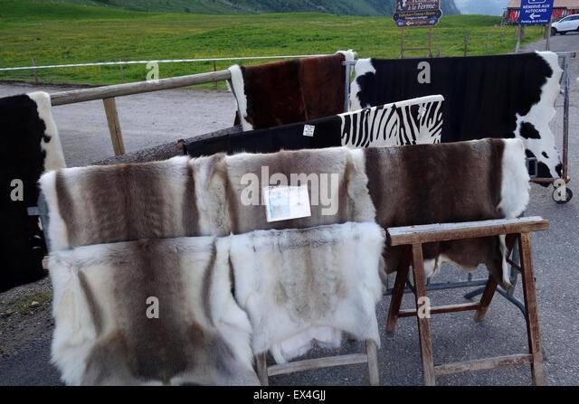 Rentierleder Skins, die Peau de Renne für Verkauf Souvenir Shop Col des Aravis Rhone-Alpes Frankreich Französisch Stockbild