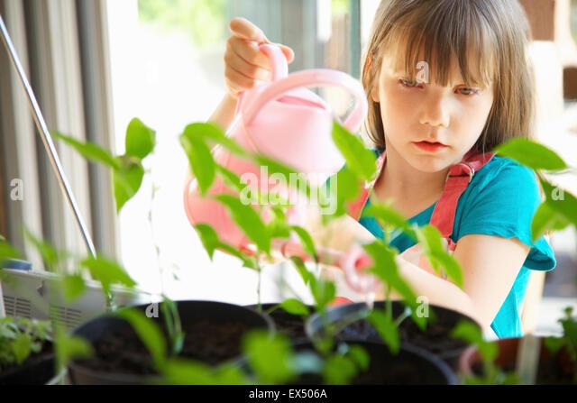Junges Mädchen Bewässerung von Pflanzen mit rosa Gießkanne Stockbild