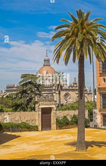 Die Kathedrale angesehen von The Alcazar Jerez De La Frontera Andalucia Spanien Stockbild
