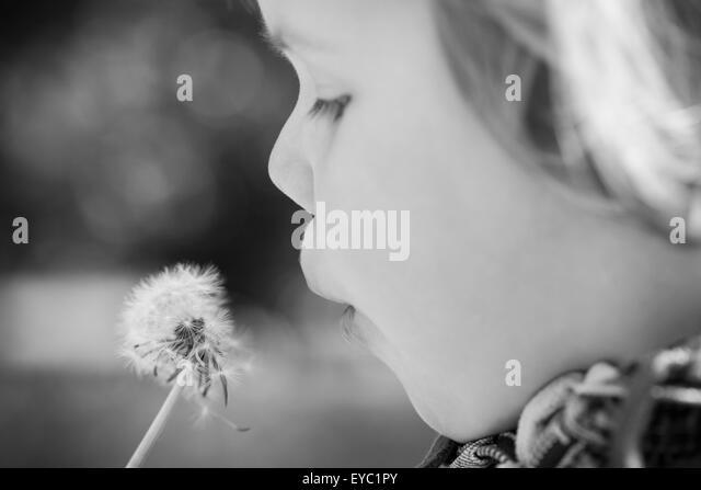 Kaukasische blonde Baby Mädchen und Löwenzahn Blume in einem Park, monochrome Fotos mit Tiefenschärfe Stockbild