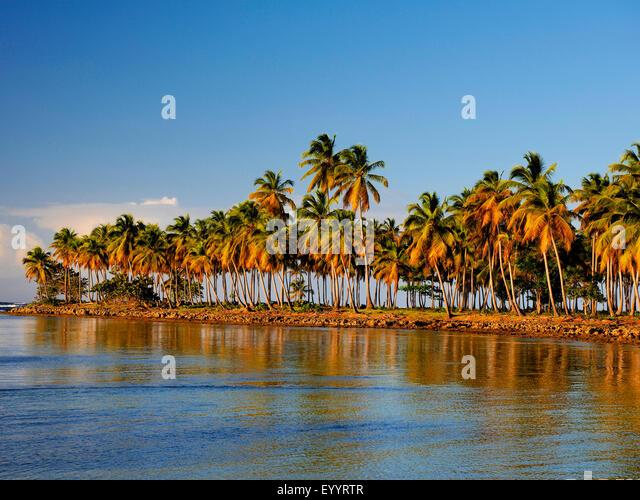 Bucht von Samana, Las Galeras, Dominikanische Republik, Samana Stockbild