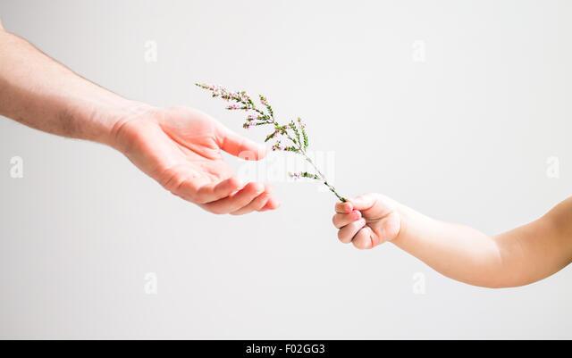 Übergabe der Blume mit einem Erwachsenen Kind Stockbild
