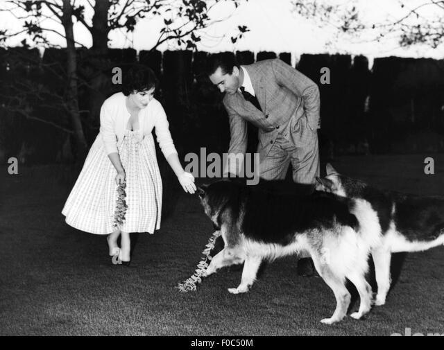 Gina Lollobrigida, mit Mann Milko Skofic, 1950er Jahre Stockbild