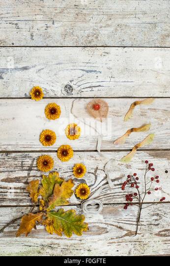 Herbst Blumen, Blätter und Samen auf rustikalen Holzoberfläche Stockbild
