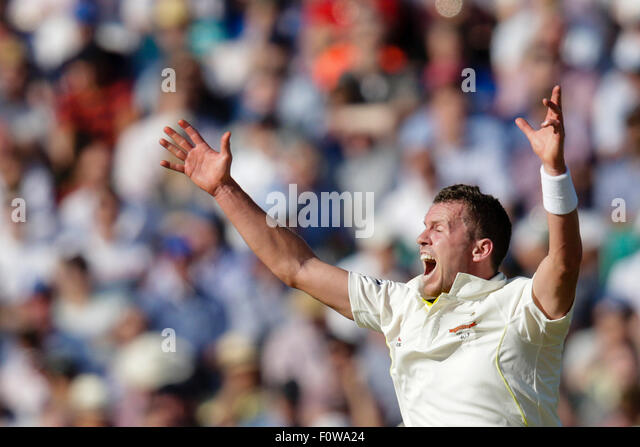 London, UK. 21. August 2015. Investec Asche 5. Test, Tag 2. England gegen Australien. Australiens Peter Siddle Appelle Stockbild