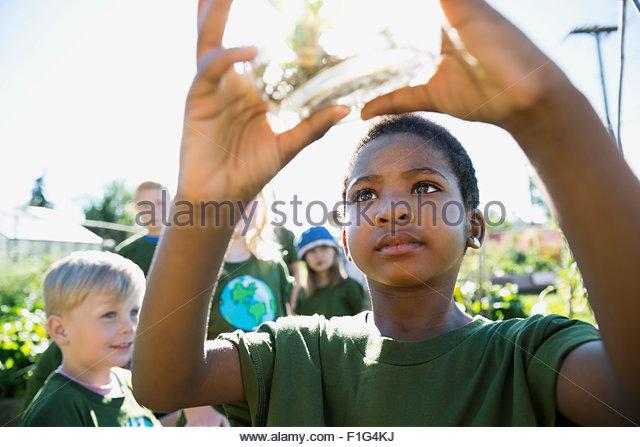 Neugierige Mädchen untersuchen Pflanze Glas Sonnengarten Stockbild