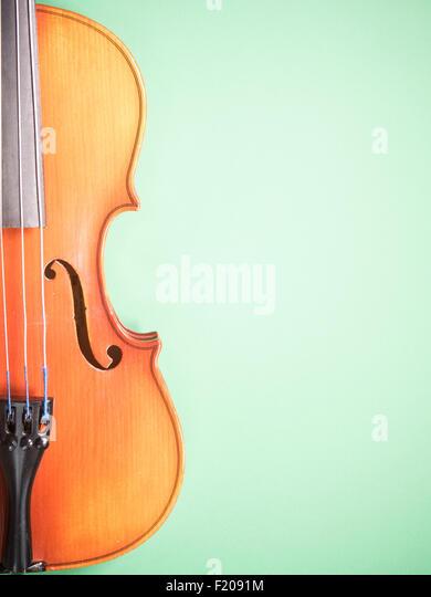 Geige Vor Grünem Hintergrund Stockbild